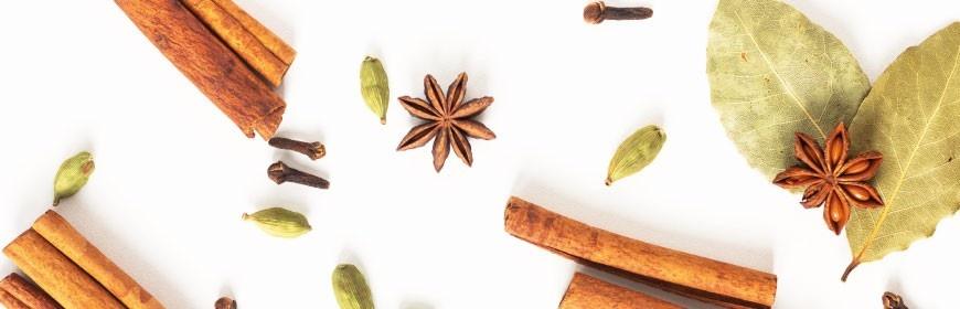 Découvrez notre sélection de cires parfumées Bridgewater Candles aux notes épicées pour brûle-parfum.