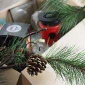 🎁🎄Donnez encore plus de vie à votre décoration de Noël avec nos sachets et bougies parfumés Tree Trek! Une douce odeur de sapin, de cèdre avec des notes de caramel et de musc! #bridgewatercandles #candles #treetrek #noel #magienoel #senteurnoel #lovechristmas #christmas #scentsachet #sachetparfumé #lovesachet #ideecadeau 📷 @bridgewatercandles.eu